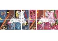 wonderland(blue version/red version, 2 sets of portfolio with 8 prints) by tadanori yokoo