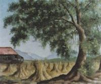 souvenirs de la terre by albert locca