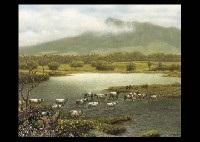 lakeside by shogo endo