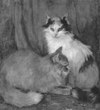 zwei katzen vor blauem vorhang by frieda menshausen-labriola