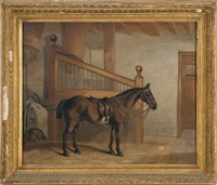a horse in a stable by edward lloyd