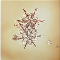 snowflake by doug and mike starn