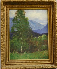 summer landscape with franconia notch in the distance by daniel santry