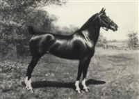 portrait of the horse 'lady dilham' by richard newton ii