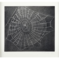 untitled, web. no. 1 by vija celmins