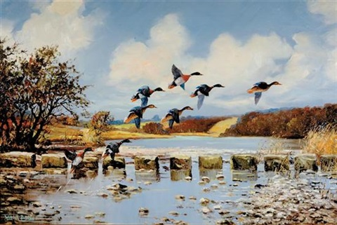ducks taking flight ducks flying low pair by wilfred bailey