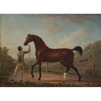 milo, a famous stallion the property of viscount townsend by richard roper