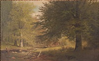 landscape by william mckendree snyder