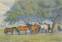 horses beside a pond in a parkland setting by dorothy and elizabeth alderson