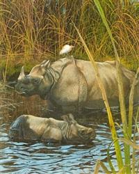 the rhinoceros (bk. w/ text by sandra raphael, folio) by matthew hillier