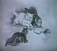 junge katzen beim spiel by m. manouvriez