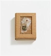 aus: gesammelte werke (15 artist's books) by dieter roth