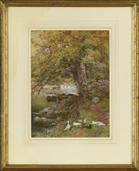 on the llugny, north wales by isabel oakley naftel