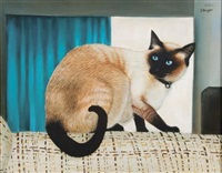 siamese cat on a sofa by braam kruger