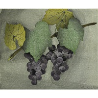 two bunches of grapes by luigi rist