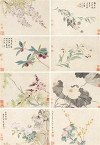 花卉 (album of 8) by ma yuanyu