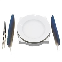 dish by lothar baumgarten