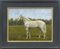 portrait of a white horse by wouter verschuur the younger