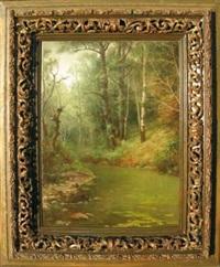 paesaggio boschivo by francesco capuano