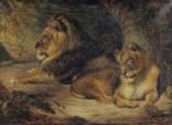 lion and lioness beside a tree by william huggins