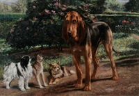 blood hound and friends by charles h.d. boland de spa