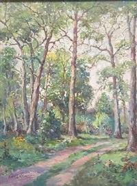 path with tall trees by george a. newman