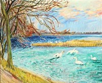 swans on the lake by ludvig jacobsen