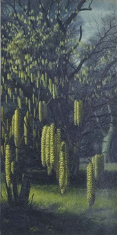 catkins by raymond booth