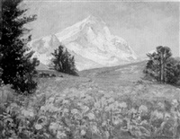alpenlandschaft mit gelben wiesenblumen by max köcke-wichmann