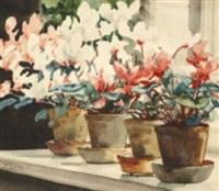 blomsterstilleben med alpviol by olga aleksandrovna (princess of storfyrstinde)