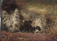 a terrier and puppies in a stable by robert l. alexander