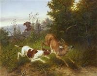 hunde reißen rehbock by otto grashey