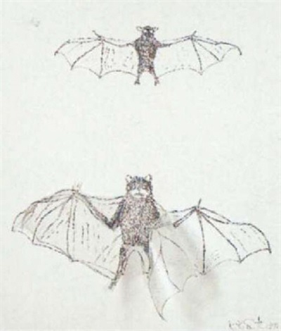 animals by kiki smith