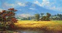 pemandangan sawah by wasim lim