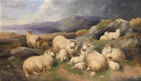 the highland flock by john charles morris