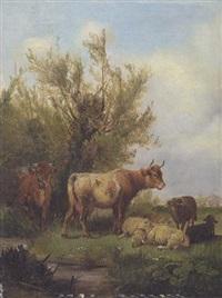 kühe und schafe by ludwig sellmayr