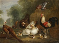 hens, chicks, cockerel and other wild fowl beside a ruined wall by marmaduke cradock