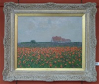 the poppy field by julius olsson