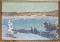 dimmor och rimfrost i solsken by fritz lindström
