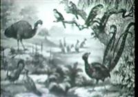 tierwelten in schaubildern (um 1910) by louis morin