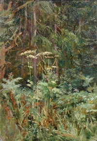 woodland scene with cow parsley by isa jobling
