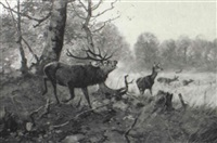 elk and deer in a forest landscape by christoffer johann drathmann