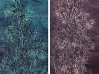 honey moon in the forest no. 9 (1); honey moon in the forest no. 6 (2) (2 works) by liang junzi