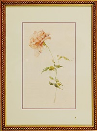 rose by alice ravenel huger smith