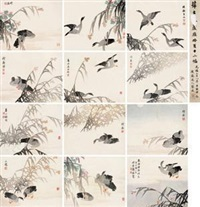 芦雁 (album of 12) by xue huai