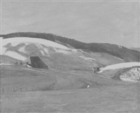 schwarzwald im vorfrühling by ferdinand otto leiber
