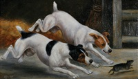 two terriers chasing a rat by e. aistrop