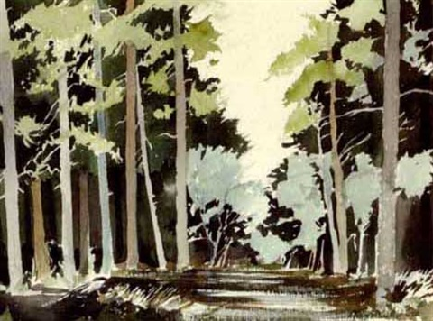 the piney woods by john alexander