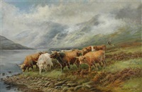 highland cattle by a loch in a mist, a drover approaching with his dog by andrew graham
