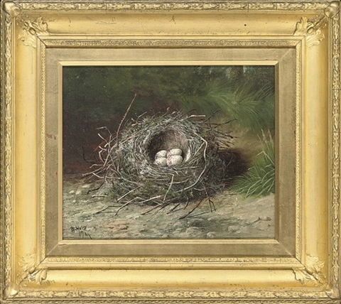 birds eggs in a nest on a grassy bank birds eggs in a nest on a sandy bank 2 works by ben hold